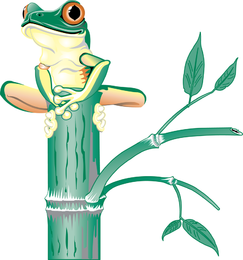 Frog standing in bamboo