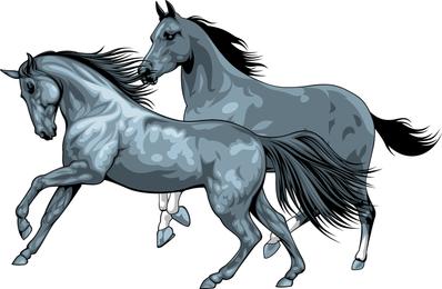 Horse 05 Vector
