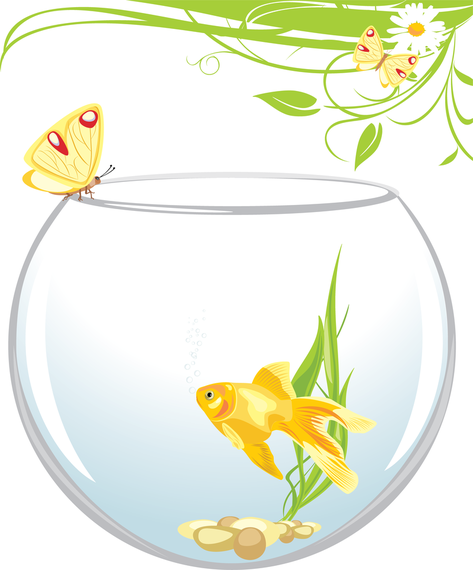 Goldfish with butterfly and plants