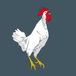 Gallo vector