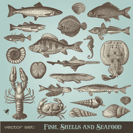 Seafood Animals Vector