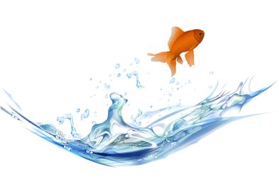 Goldfish Vector 5 2