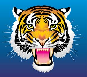 3 Tiger Head Vector