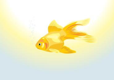 Goldfish swimming in the sea