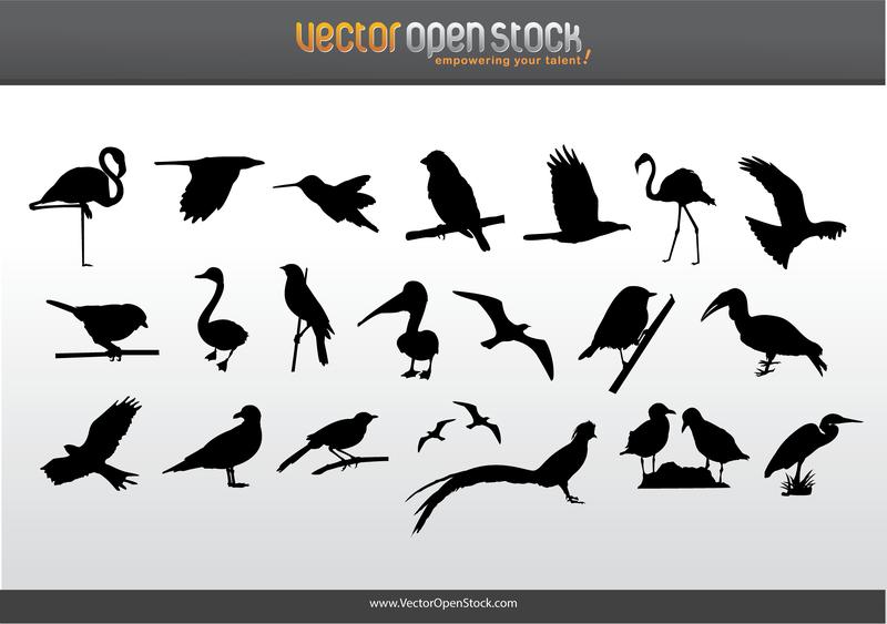 Vögel Silhouette Bundle