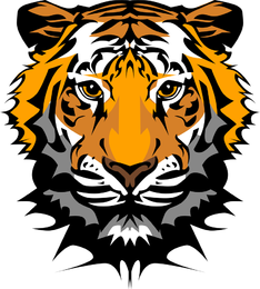 The Tiger Picture 20 Vector