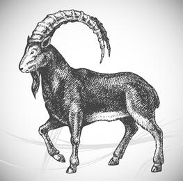5 Pintado Animales vectorial