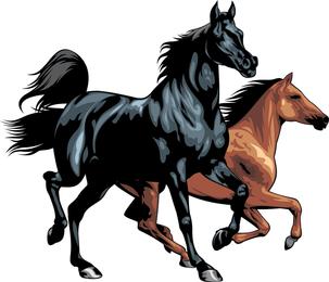 Horse 03 Vector
