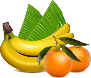Ai Desenho Lifelike Frutas Vector