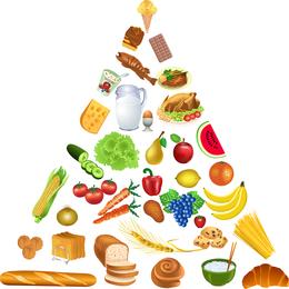 3 pirâmide alimentar vector