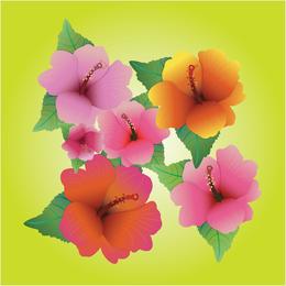 Vectores de hibisco
