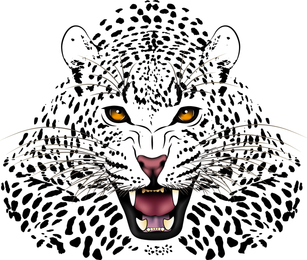 Tiger Image 18 Vector