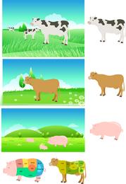 Piezas De Carne De Cerdo Del Vector Del Mapa De Descomposición