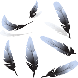 Feather 01 Vector