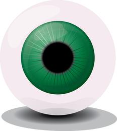 Vetor de olho verde