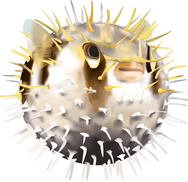 Vector de pez globo