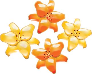 Gelbe und orangefarbene Blume eingestellt