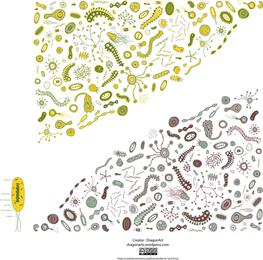 Ilustração de bactérias