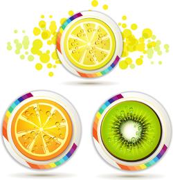Rebanadas de frutas deliciosas 04 del vector