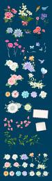 Lily rose y otro vector