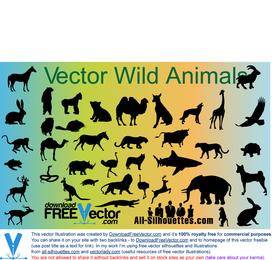 Vector de animales salvajes