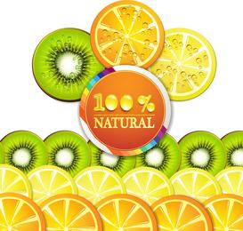 Rebanadas de frutas deliciosas 03 del vector