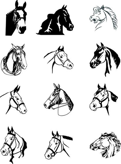 vector caballo blanco y negro descargar vector