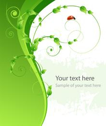 Vector de mariquita verde