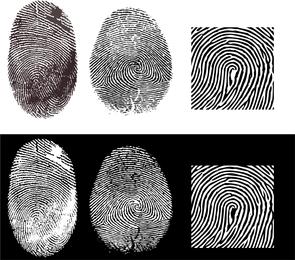 Fingerprint Vector 2