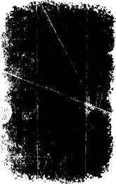 Efecto práctico del vector de elementos de textura