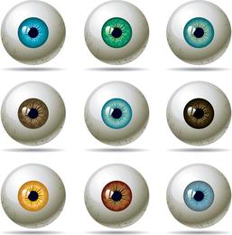 Uspupil del ojo vector