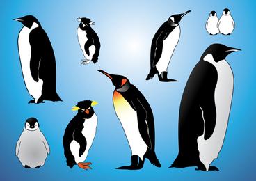 Vectores de pingüinos