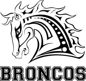 Broncos Fantasy League