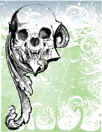 Vector de cráneo de dinero