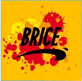 Brice De Nice Vector Design