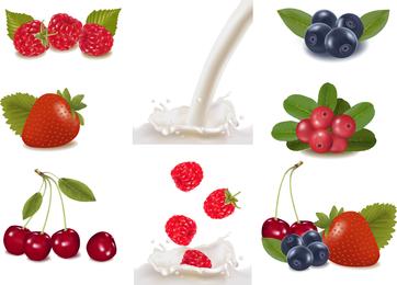 The Fruits Fresh Milk 02 Vector