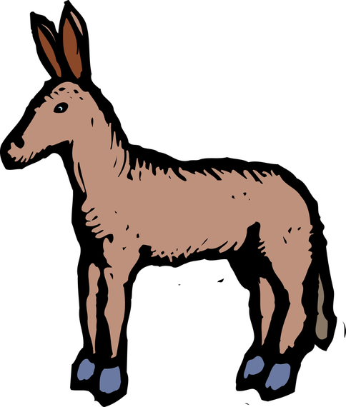 Donkey drawing clipart