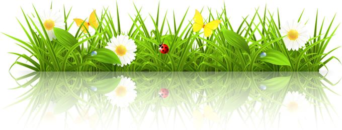 Spring 02 Vector