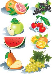 Ilustrações de frutas sombreadas