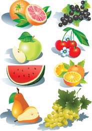 Shadowed fruits illustrations