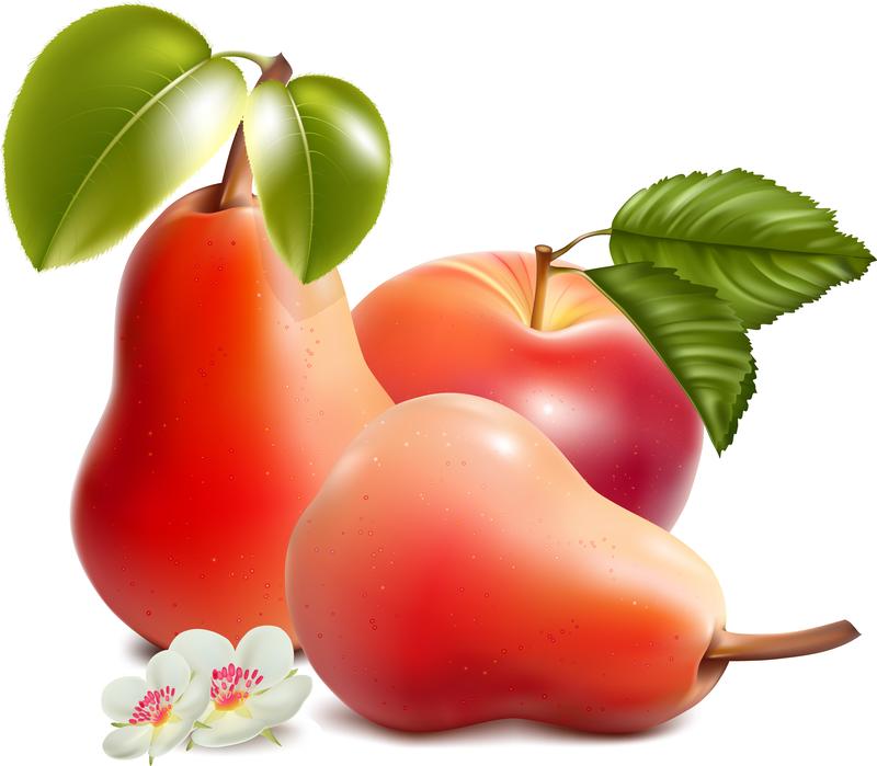Картинки груши и яблока, вход иерусалим картинки