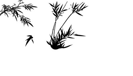 Silueta de la planta de bambú