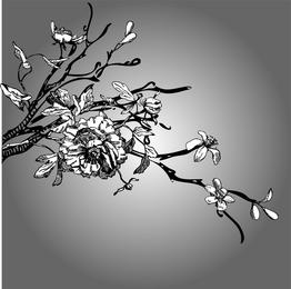 Schwarzweiss-Strichzeichnungs-Vektor Kapok