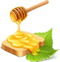 Pan de miel vector