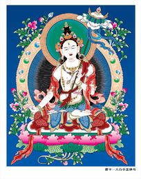 Deusa de Thangka Ai vetor branco dossel não pedágio