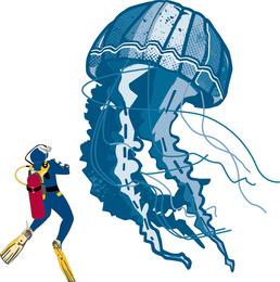 Jellyfish illustration next to diver