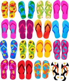 Flip Flops colorido conjunto de vectores