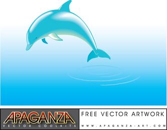 Vetor de golfinho grátis