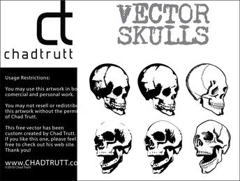 Crânios Humanos 2