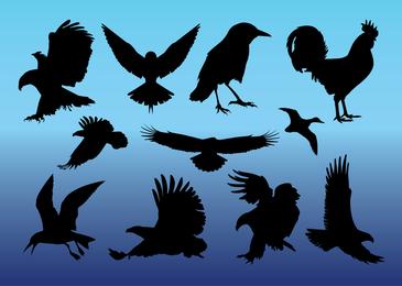 Freie Vögel Vektoren